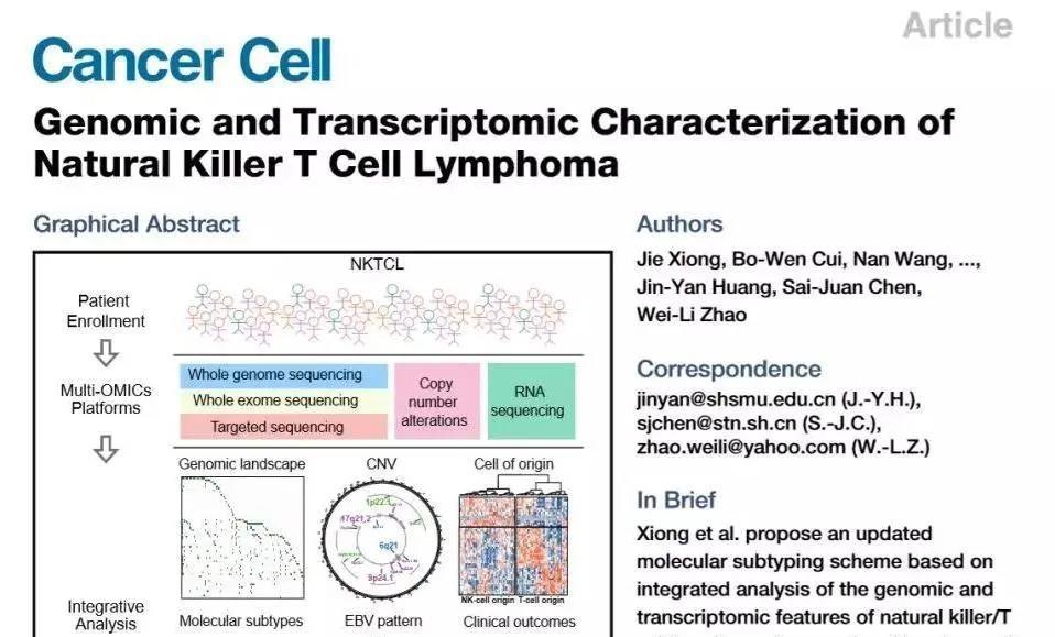 又一篇顶刊!网络信息中心支撑交大科研 Cancer Cell 发文